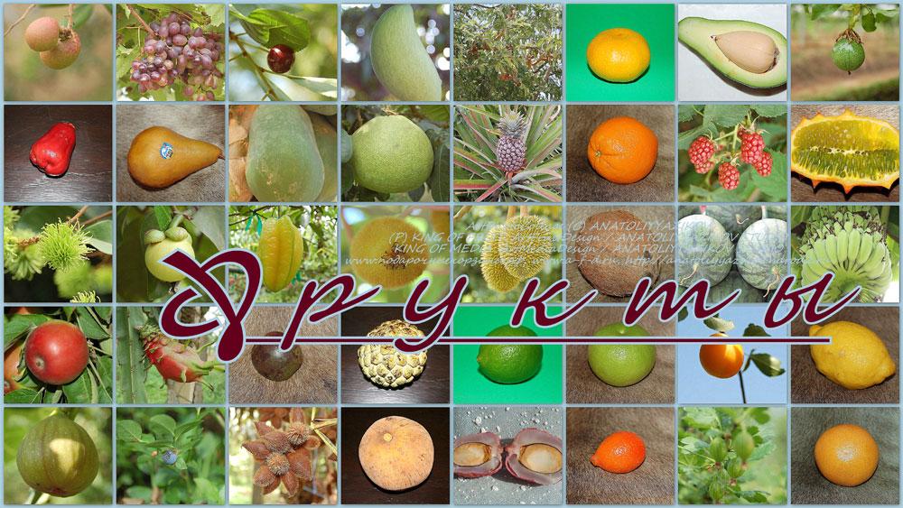 мангустин фрукт где купить